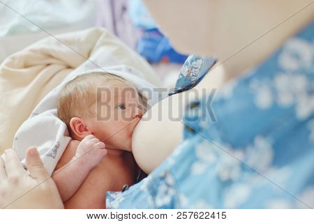 Mother Breastfeeding Baby In Her Arms At Home