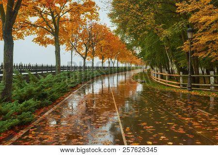 Autumn Park, Rainy Background, Autumn Landscape Background Rain Texture In An October Park, Walk In