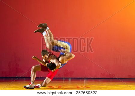 Two strong wrestlers in blue wrestling tights are wrestlng and making a suplex wrestling on a yellow wrestling carpet in the gym. Young man doing grapple. poster