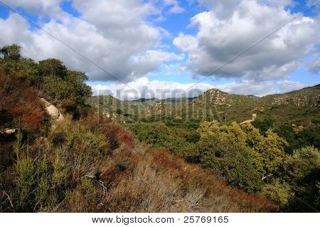 Chiquito Trail