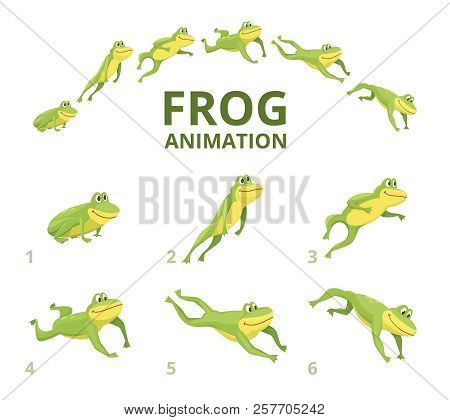 Frog Jumping Animation. Various Keyframes For Green Animal. Vector Frog Animation, Jump Amphibian An