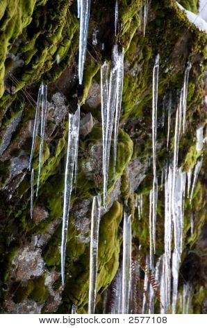 Icicles, Water Fall, Cascade Mountains, Washington State