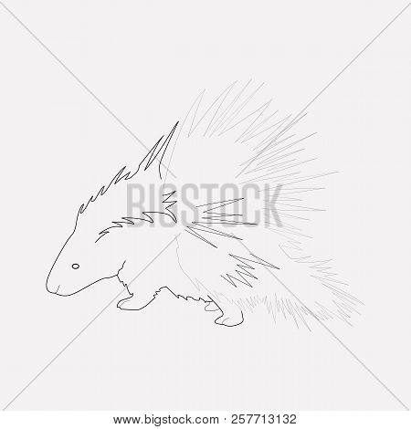 Porcupine Icon Line Element. Vector Illustration Of Porcupine Icon Line Isolated On Clean Background