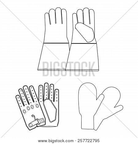 Vector Design Of Glove And Winter Logo. Set Of Glove And Equipment Stock Vector Illustration.