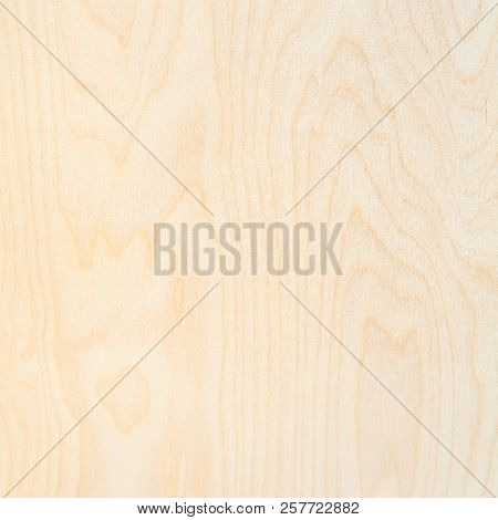 Wooden Square Background From Natural Birch Plywood