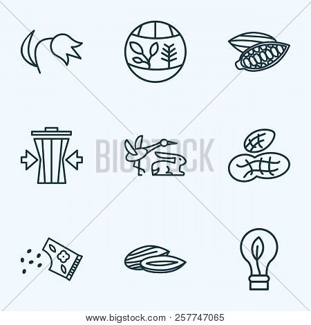World Icons Line Style Set With Flora, Eco Bulb, Fauna And Other Energy Elements. Isolated Vector Il