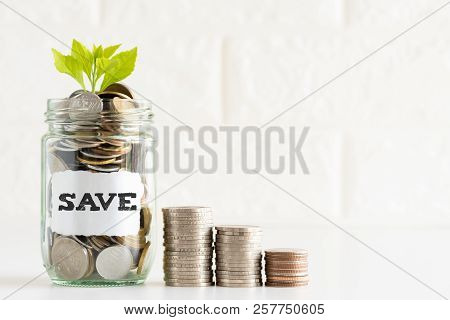 Abstract Money Saving Small Young Tree With Glass Jar Coins With Save Text And Stack Coins On White