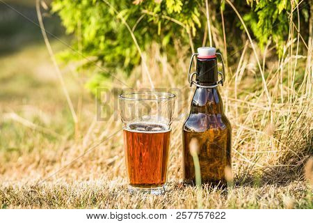 Golden Beer In A Glass With A Bottle Next To It In Idyllic Nature In The Summer