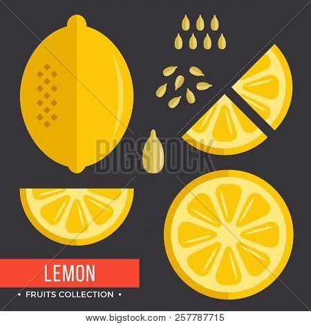Lemon Set. Yellow Lemon. Modern Flat Icons. Vector Illustration