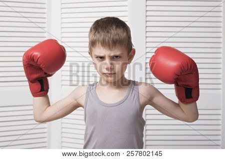 Angry Boy In The Red Boxing Gloves.