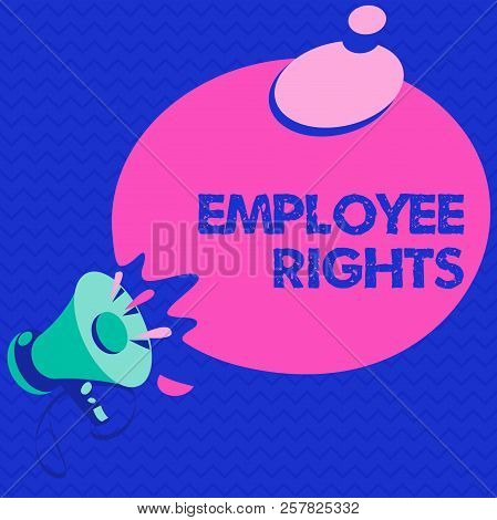 Word writing text Employee Rights. Business concept for All employees have basic rights in their own workplace poster
