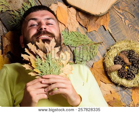 Man Bearded Hipster Lay On Wooden Background With Orange Leaves Top View. Man With Beard And Mustach