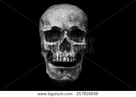 Halloween Skull. Skull and Cross Bones. Spooky human skeleton. Halloween images.