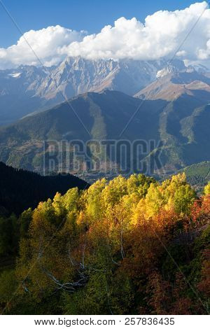 Autumn in Zemo Svaneti, Georgia. Ushba peak in clouds. View from Mount Mkheer. Landscape with birch forest on the hillside. Main Caucasian ridge