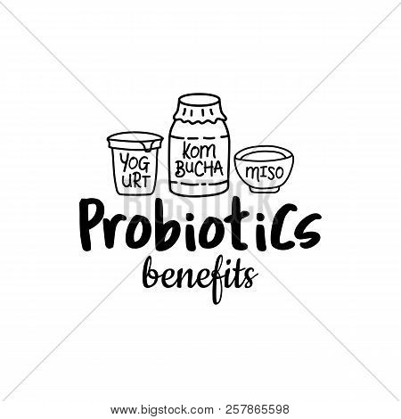 Probiotics Benefits. Good Bacteria, Food And Medicine. Gut Bacterial Flora. Fermentation Products. V