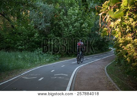 Photo of bicycle road with bicyclist among trees on summer day poster