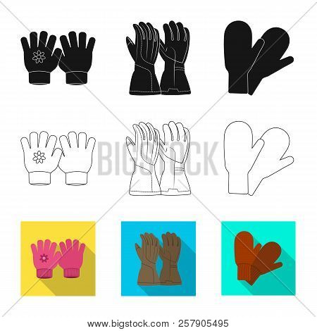 Vector Design Of Glove And Winter Symbol. Set Of Glove And Equipment Stock Vector Illustration.