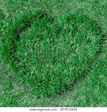 Green Grass Mowed In The Shape Of A Heart.