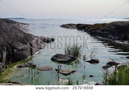 Rocky Shore Of Lake Ladoga. Out Of The Water Are The Rocks And Plants. There Are Many Islands On The