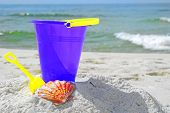 Purple pail and pretty seashell in sand by ocean poster