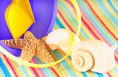 Beach bucket and blanket with seashells poster