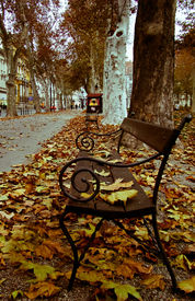 Autumns of Yesteryear