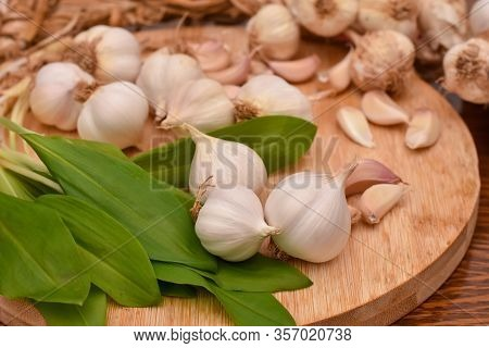 Wild Garlic Ramson Or Bear Garlic With Garlic Bulb And Garlic Cloves On Wooden Cutting Board