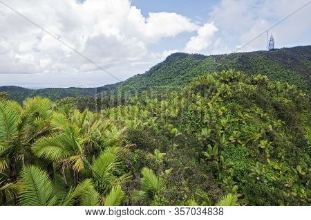 Tropical Rainforest Of El Yunque And Telecommunications Broadcasting Tower Atop Peak