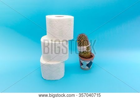 Concept Of Scarcity, Panic Buying And Storages Of Toilet Paper During A Coronavirus Epidemic, A Cact