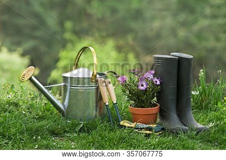 Gardening Tools And Plants In The Garden Background. Gardening - Set Of Tools For Gardener And Flowe