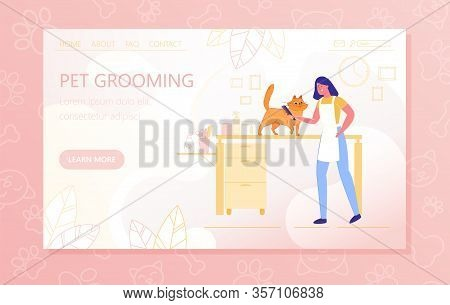 Preparing Cat For An Exhibition, Pet Grooming. Girl Groomer Combs Cat With Special Comb. Bathing And