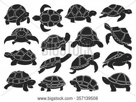 Sea Turtle Vector Illustration On White Background .tortoise Of Animal Vector Black Set Icon. Isolat
