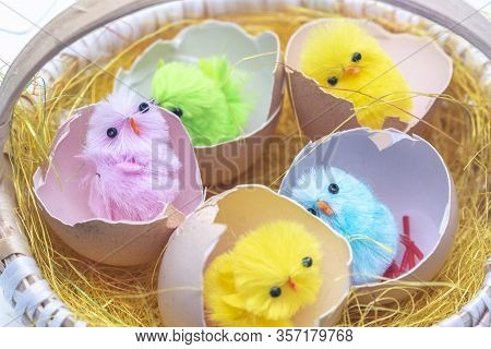 Easter Eggs In The Basket, Chickens In The Eggs, Easter Eggs, Happy Easter Card, Easter Background
