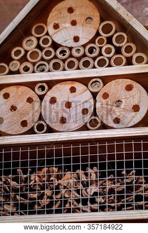 View To An Insect House In The Garden, Protection For Insects, Named Insect Hotel
