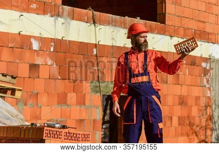 Brick Building Material Used To Make Walls. Lightweight Brick Made From Expanded Clay Aggregate. Ele