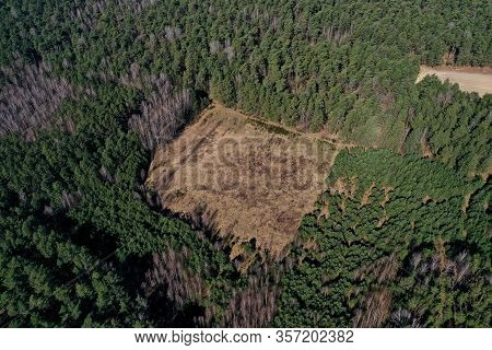Deforestation Top View Aerial Photography From A Drone