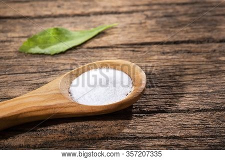 Stevia Plant Leaves And Powder - Stevia Rebaudiana