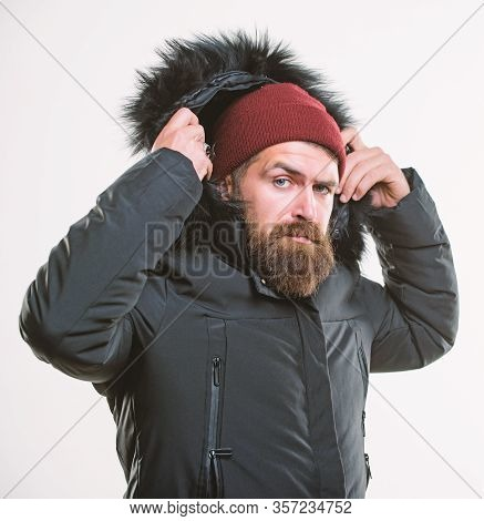 Man Bearded Stand Warm Jacket Parka Isolated On White Background. Hood Adds Warmth And Weather Resis