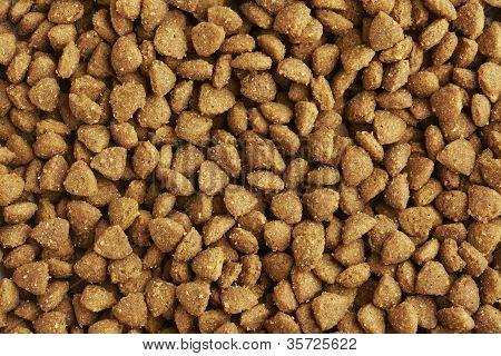 Dog Or Cat Food Close Up