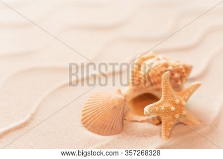 Soft Focus Summer Beach Background With Shell Seastar, Vacation And Travel Concept, Flat Lay Top Vie