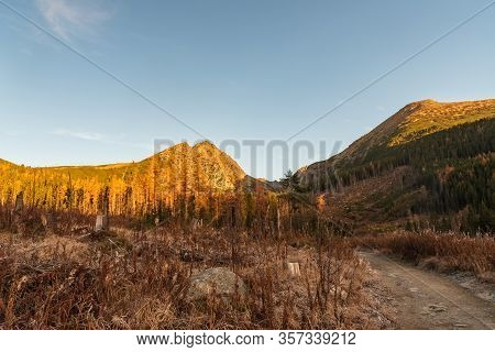 Lower Part Of Mlynicka Dolina Valley In Autumn Vysoke Tatry Mountains In Slovakia With Peaks, Forest