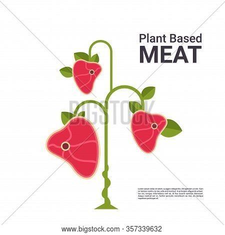 Plant Based Vegetarian Steak Eco Food Tree Beyond Meat Organic Natural Vegan Food Concept Copy Space