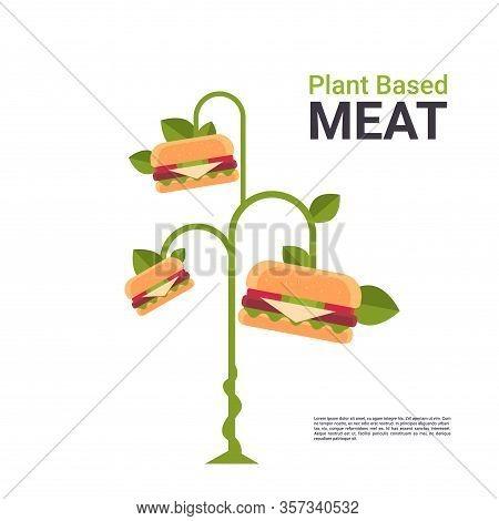 Plant Based Vegetarian Burger Eco Food Tree Beyond Meat Organic Natural Vegan Food Concept Copy Spac