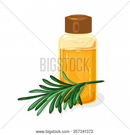 Green Twig Of Siberian Pine Or Melaleuca Is Near Glass Jar Closed By Brown Cap With Fragrant Curativ
