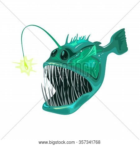 Anglerfish Is Bony Predatory Fish With Large Head That Bear Enormous, Crescent-shaped Mouth Full Of