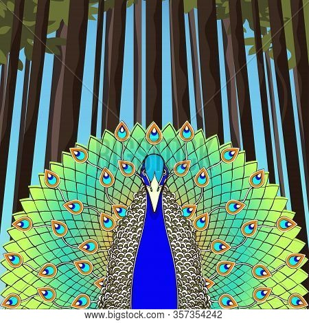 Peacock With Flowing Tail On The Background Of Trees And Forests, Colorful Cartoon Drawing, Stylized