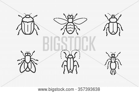 Insects Icon Set In Linear Style. Vector Illustration