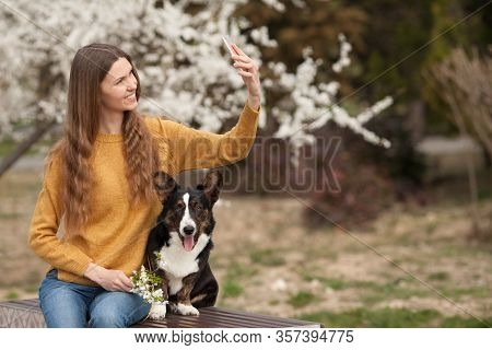A Young Woman In A Yellow Sweater Takes A Selfie On Her Mobile Phone Smiling, With Her Dog Welsh Cor
