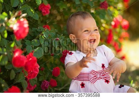 Cute Beautiful Little Baby Girl In Blooming Roses Is Smiling. The Concept Of A Warm Relationship In