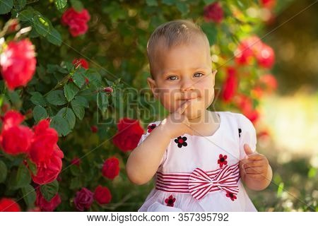 Cute Beautiful Baby Girl In Blooming Roses Is Sitting And Smiling. The Concept Of Childrens Health,